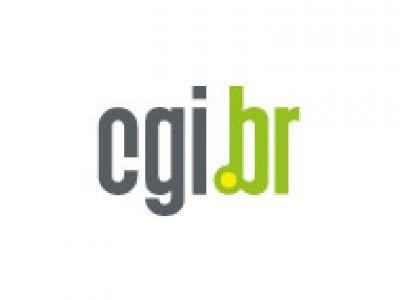 Comitê Gestor da Internet no Brasil (Cgi.br)